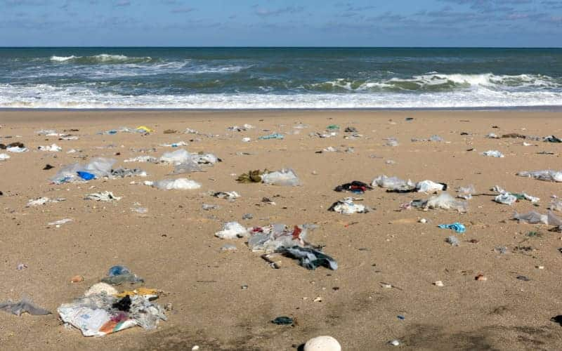 7 Ways To Avoid Plastic Pollution In The Sea